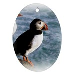 Atlantic Puffin Birds Oval Ornament (Two Sides)