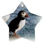 Atlantic Puffin Birds Star Ornament (Two Sides)