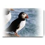 Atlantic Puffin Birds Large Doormat