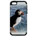 Atlantic Puffin Birds Apple iPhone 5 Hardshell Case (PC+Silicone)