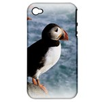 Atlantic Puffin Birds Apple iPhone 4/4S Hardshell Case (PC+Silicone)