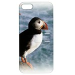 Atlantic Puffin Birds Apple iPhone 5 Hardshell Case with Stand