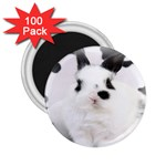 Animals Rabbits Brothers 2.25  Magnet (100 pack)