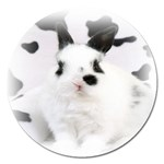 Animals Rabbits Brothers Magnet 5  (Round)