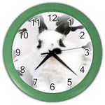 Animals Rabbits Brothers Color Wall Clock