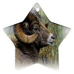 Bighorn Sheep Ornament (Star)