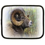 Bighorn Sheep Netbook Case (XXL)