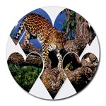 3 Dimention Kingdom Animal King Tree Climber Leopard  Round Mousepad