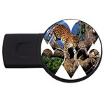 3 Dimention Kingdom Animal King Tree Climber Leopard  USB Flash Drive Round (4 GB)
