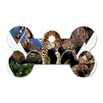 3 Dimention Kingdom Animal King Tree Climber Leopard  Dog Tag Bone (Two Sides)