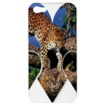 3 Dimention Kingdom Animal King Tree Climber Leopard  Apple iPhone 5 Hardshell Case