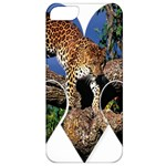 3 Dimention Kingdom Animal King Tree Climber Leopard  Apple iPhone 5 Classic Hardshell Case