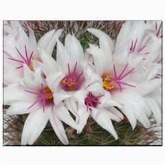 Bloom Cactus  Canvas 11  X 14  (unframed) by ADIStyle
