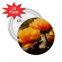Flowers Butterfly 2 25  Button (10 Pack) by ADIStyle