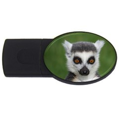 Ring Tailed Lemur 2gb Usb Flash Drive (oval) by smokeart