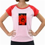 Orange Flower Women s Cap Sleeve T-Shirt