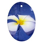 Water Flower Ornament (Oval)