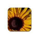 Sun Flower Rubber Square Coaster (4 pack)
