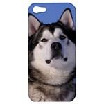 Use Your Photo Alaskan Malamute Dog Apple iPhone 5 Hardshell Case