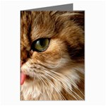 Cat Tongue Greeting Cards (Pkg of 8)