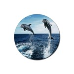 Dolphin Rubber Round Coaster (4 pack)