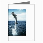 Dolphin Greeting Cards (Pkg of 8)
