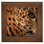Leopard Framed Tile