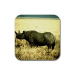 Rhino Rubber Square Coaster (4 pack)