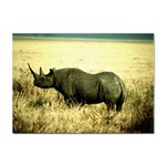 Rhino Sticker A4 (10 pack)