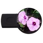 Morning Glories - Fran Hoffpauir -  USB Flash Drive Round (4 GB)