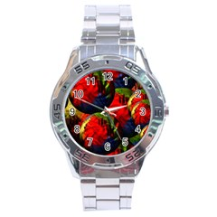 Balls Stainless Steel Watch (men s)