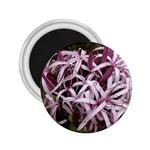 purple flowers 2.25  Magnet