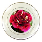 Rose 1 Porcelain Plate