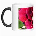 Rose 1 Morph Mug