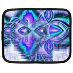 Peacock Crystal Palace Of Dreams, Abstract Netbook Sleeve (Large)