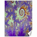 Sea Shell Spiral, Abstract Violet Cyan Stars Canvas 18  x 24  (Unframed)