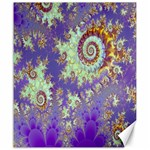 Sea Shell Spiral, Abstract Violet Cyan Stars Canvas 20  x 24  (Unframed)
