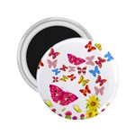 Butterfly Beauty 2.25  Button Magnet