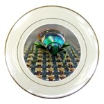 Beetle Porcelain Plate