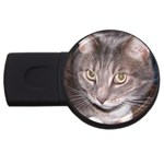 Cat vinni-van USB Flash Drive Round (1 GB)