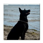 Black German Shepherd Ceramic Tile