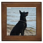 Black German Shepherd Framed Ceramic Tile