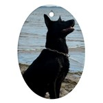 Black German Shepherd Oval Ornament