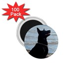 Black German Shepherd 1.75  Button Magnet (100 pack)