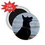 Black German Shepherd 2.25  Button Magnet (100 pack)