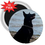 Black German Shepherd 3  Button Magnet (10 pack)