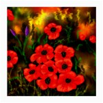 Poppies  2 Ave Hurley Ah 001 164 Png Glasses Cloth (Medium, Two Sides)