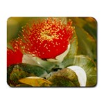 Gum nut flower Small Mousepad