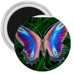 Purple Butterfly 3  Magnet