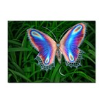 Butterfly on the Wing Sticker (A4)